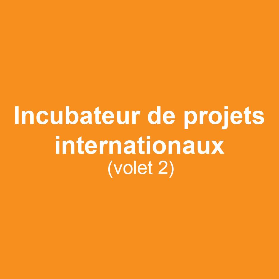ELAN_incubateur-projets-internationaux